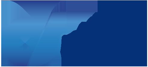 logo_ds