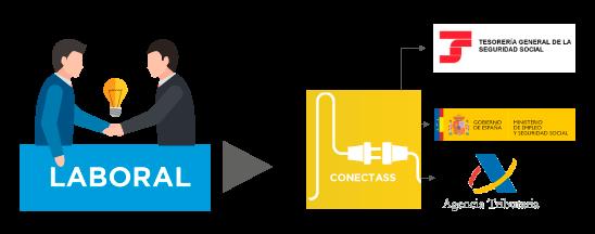 Conectass conexión con laboral
