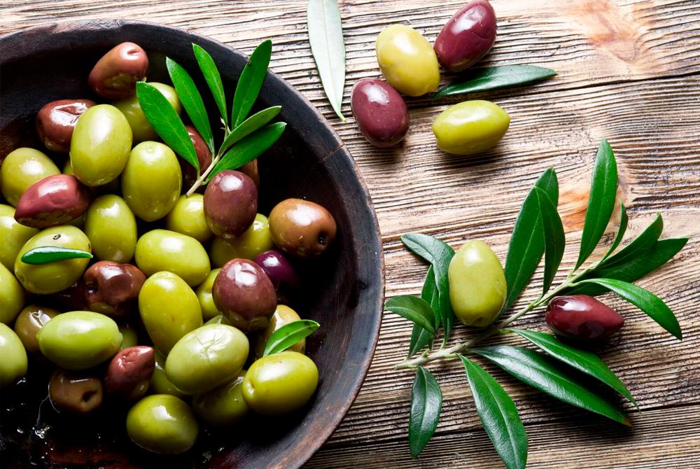 Software para gestión de olivos